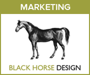Black Horse Design Marketing (Merseyside Horse)