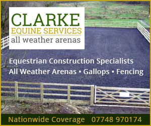 Clarke Equine Services 2019 (Merseyside Horse)