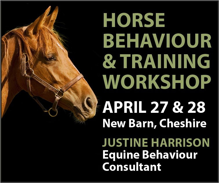 Justine Harrison Workshop April 2019 (Merseyside Horse)