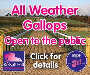 Kelsall Hill Gallops (Merseyside Horse)