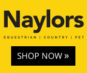 Naylors 02 (Merseyside Horse)