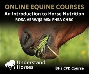 UH - An Introduction To Horse Nutrition (Merseyside Horse)