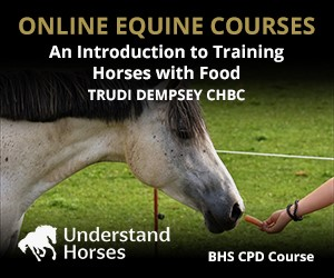 UH - An Introduction To Training Horses With Food (Merseyside Horse)