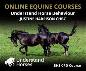 UH - Understand Horse Behaviour (Merseyside Horse)