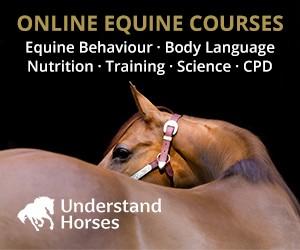 Understand Horses (Merseyside Horse)